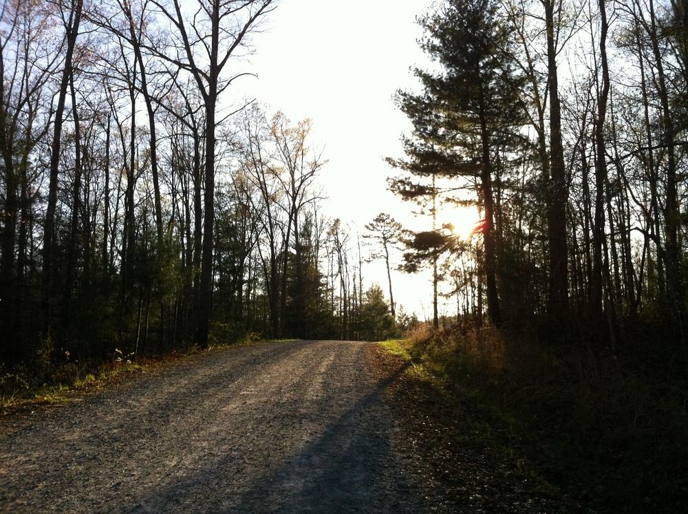 Du Pont State Forest