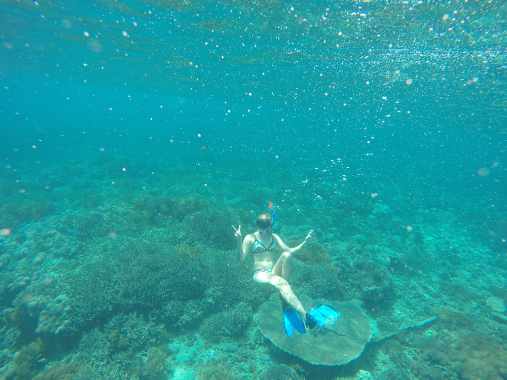 Snorkeling off the coast of Nusa Lembongan