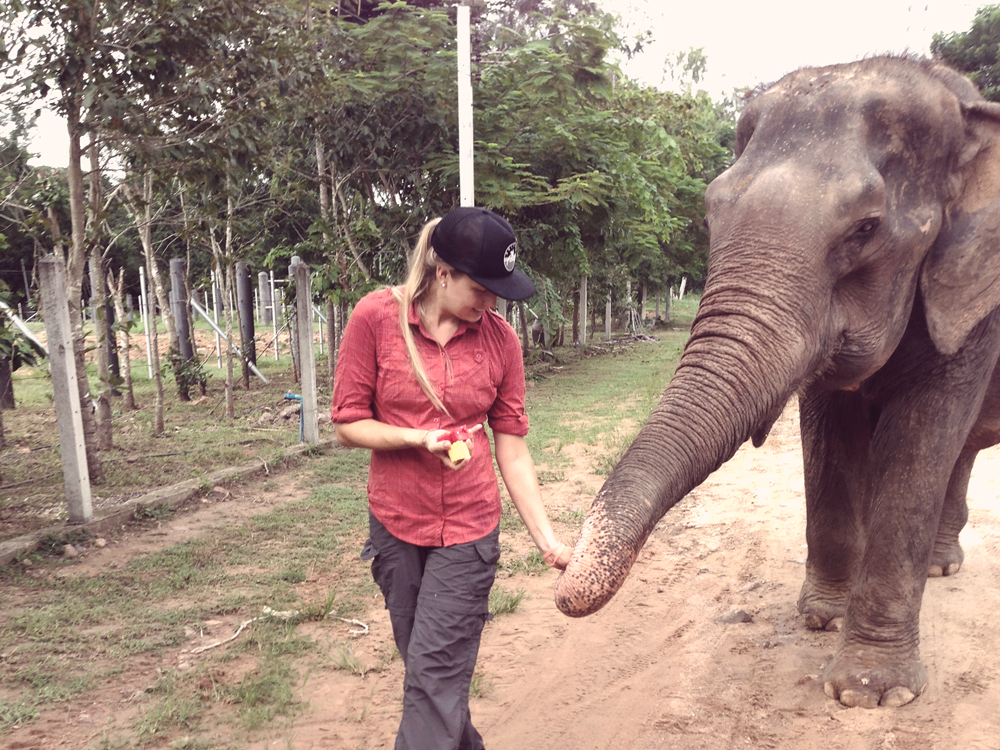 (Thong Dee) Just out takin' my elephant for a walk. No big deal.