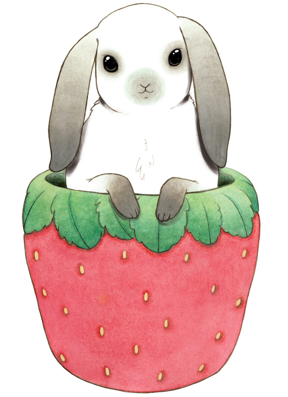 Bunny in a Strawberry Cup
