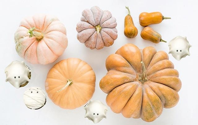 Because who doesn't love heirloom pumpkins! 😍 What's your favorite Fall decoration?