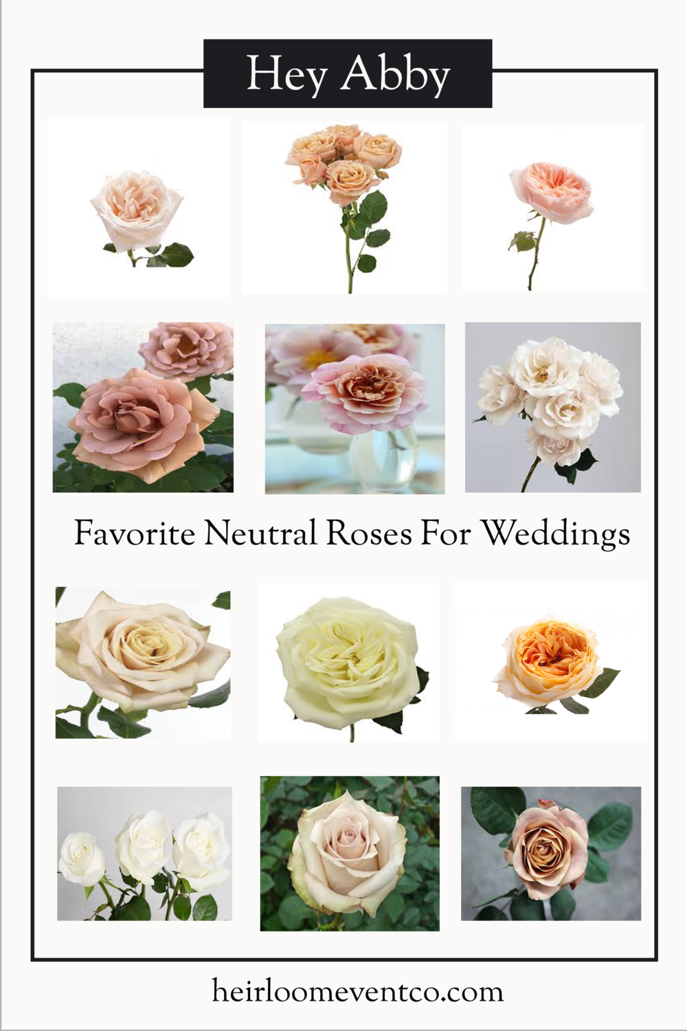 Heirloom Event Co. | Favorite Neutral Wedding Roses