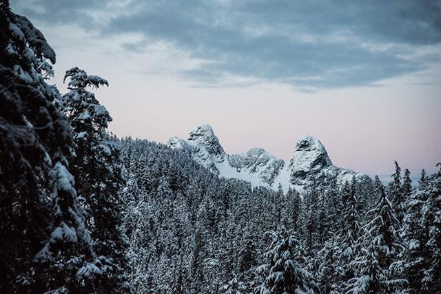 What do the peaks look like to you?
