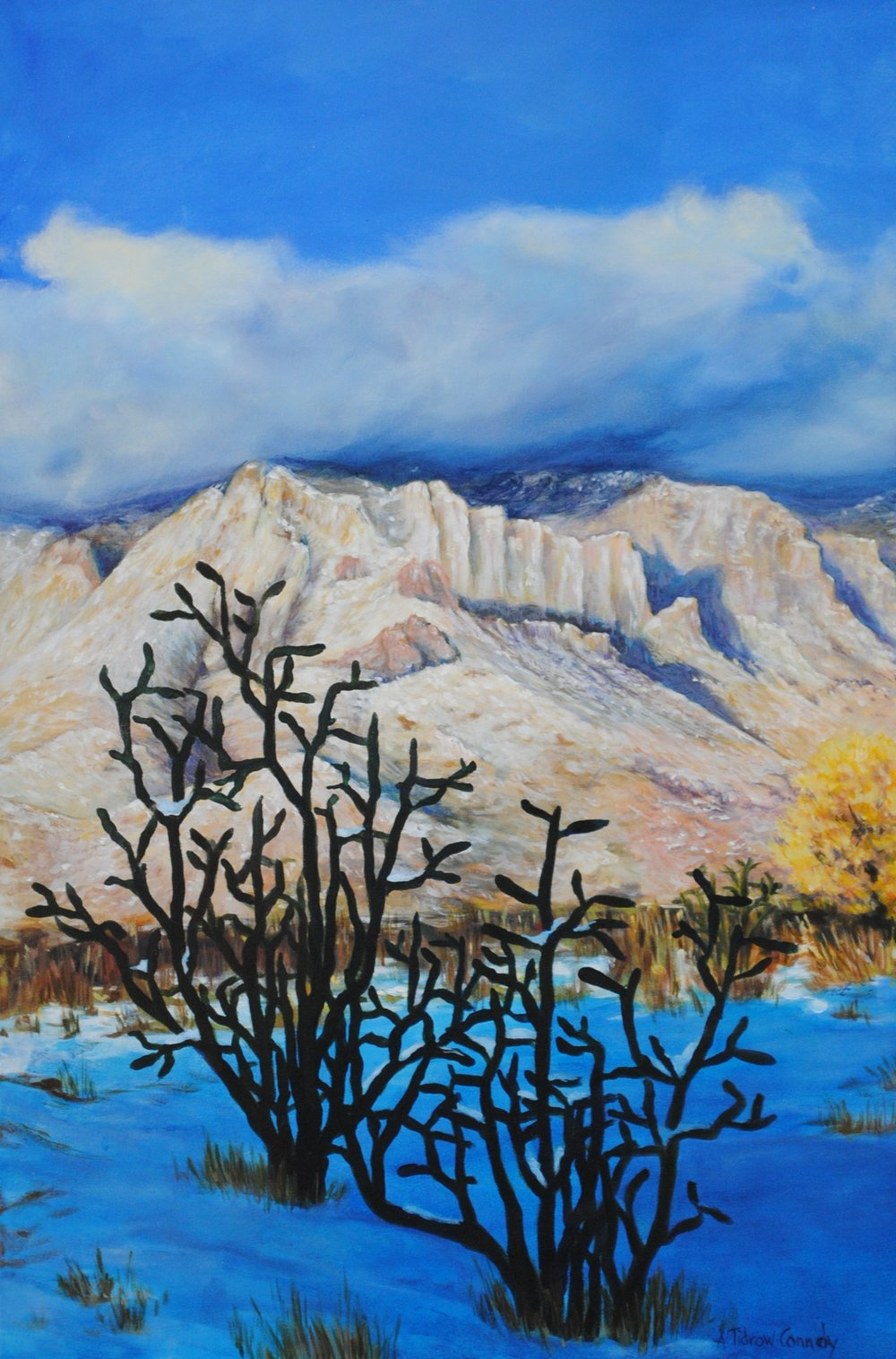 Sandia still on view - This Thursday and Friday are the last days to see the Sandia Mountain Art show at Tortuga Gallery.Hours are 1-5 both days.The