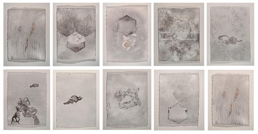 Silver Dirt Series, 2013
