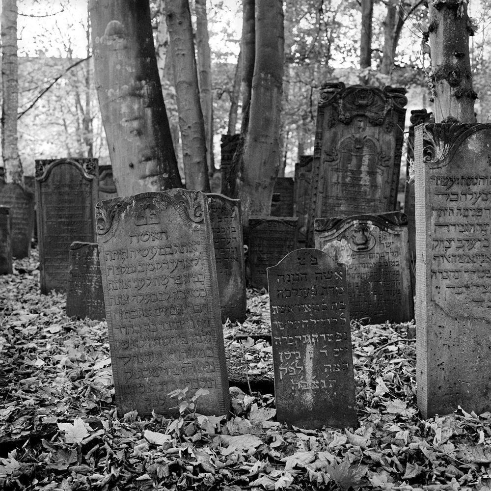 jüdischer friedhof 9.jpg