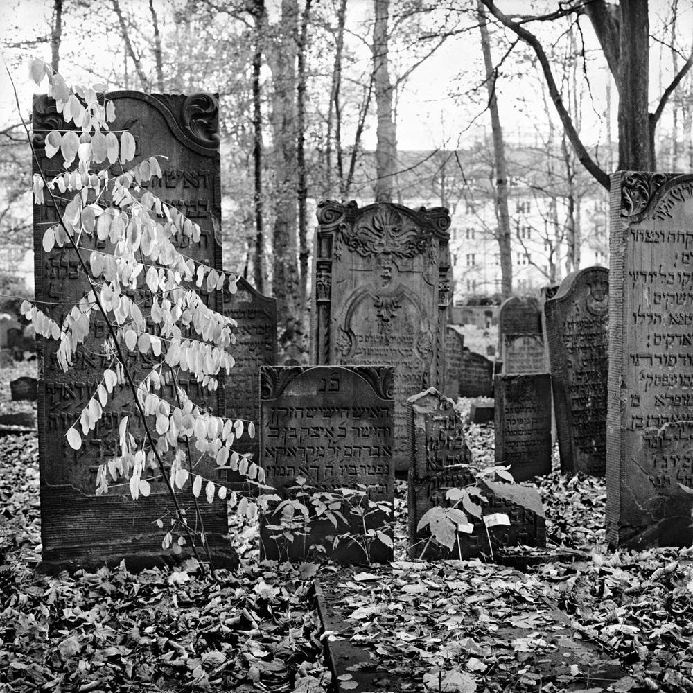 jüdischer friedhof 7.jpg