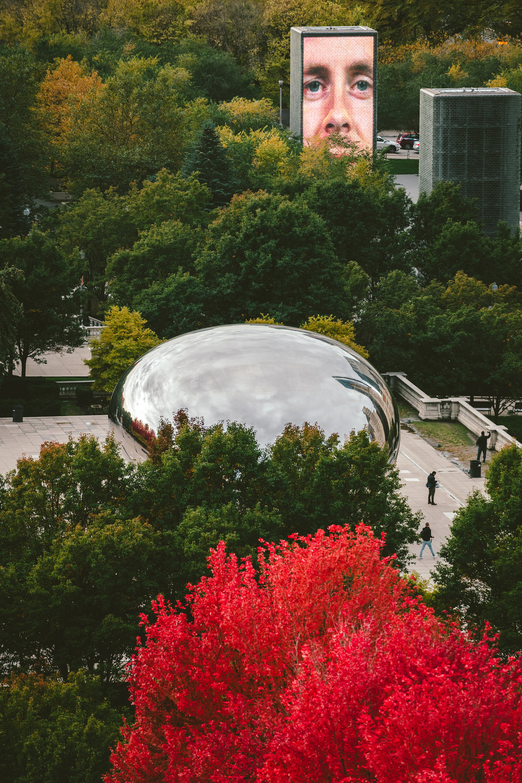 Millennium-Park-Fall-2018-0300.jpg