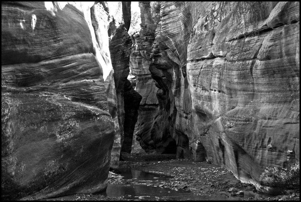 Purunuweap Canyon, UT
