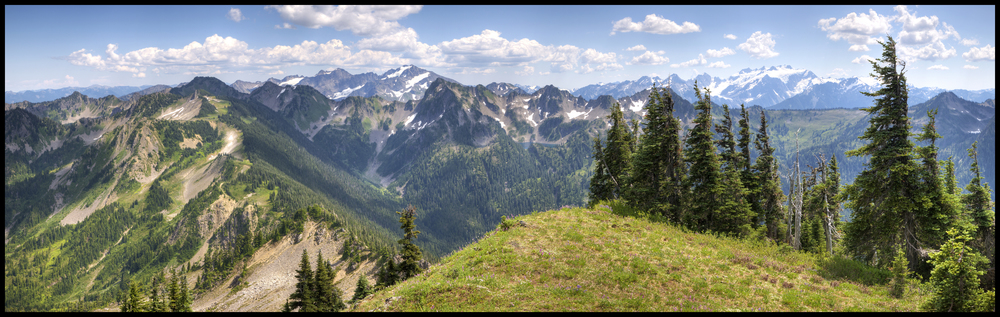 Mt. Appleton, Olympic National Park, WA