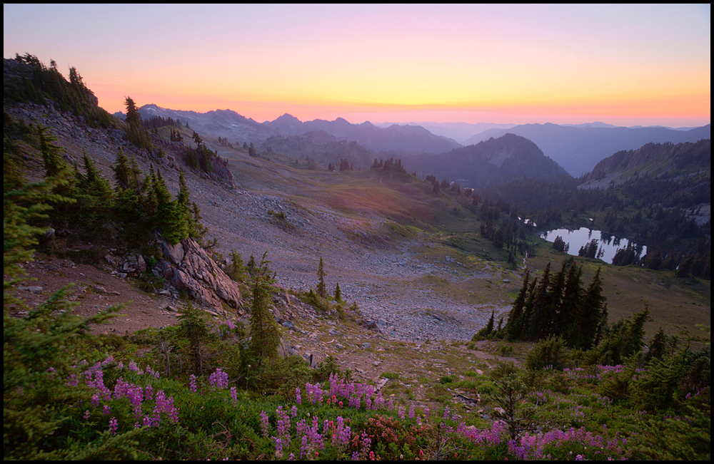 Seven Lakes Basin, Olympic National Park, WA