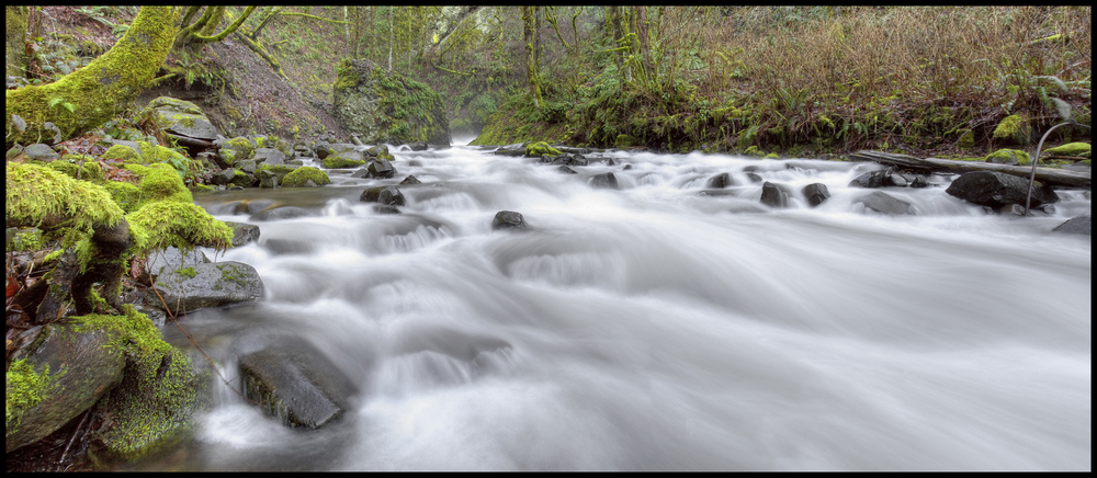 Stream near Multnomah Falls, OR