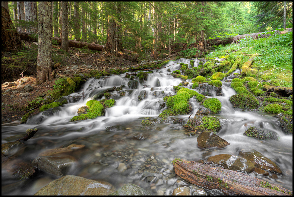 Appleton Stream, Olympic National Park, WA