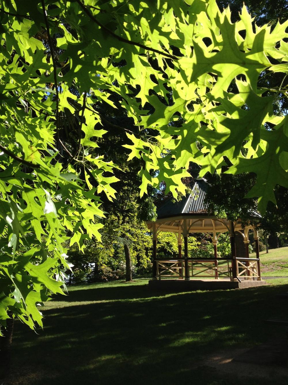 The magical Wombat Botanic Gardens - Daylesford.