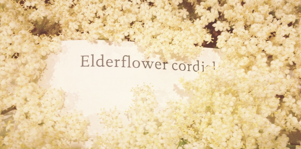 Otherwise known as  The Day Elderflowers Took Over my Kitchen...