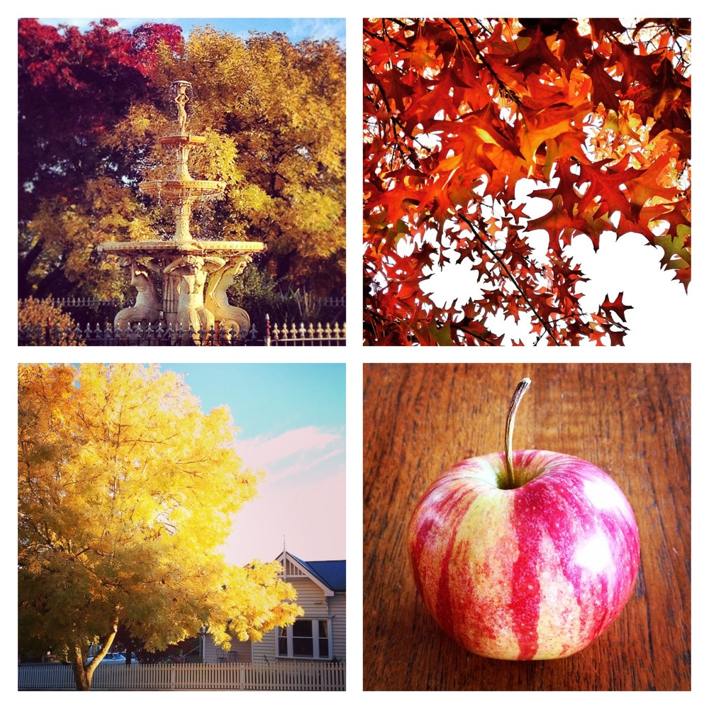 Fountains! Leaves! Trees! Apples!