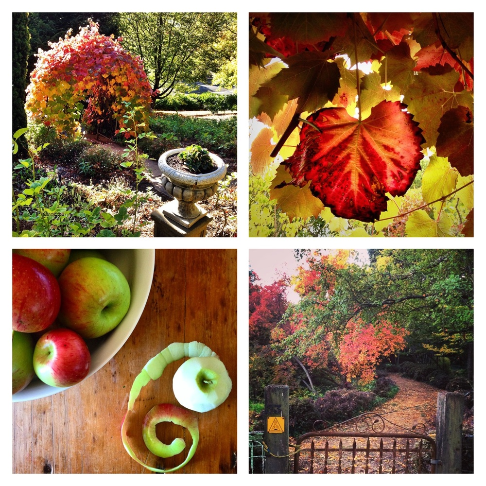 Gardens! Garden paths! Leaves! Apples!