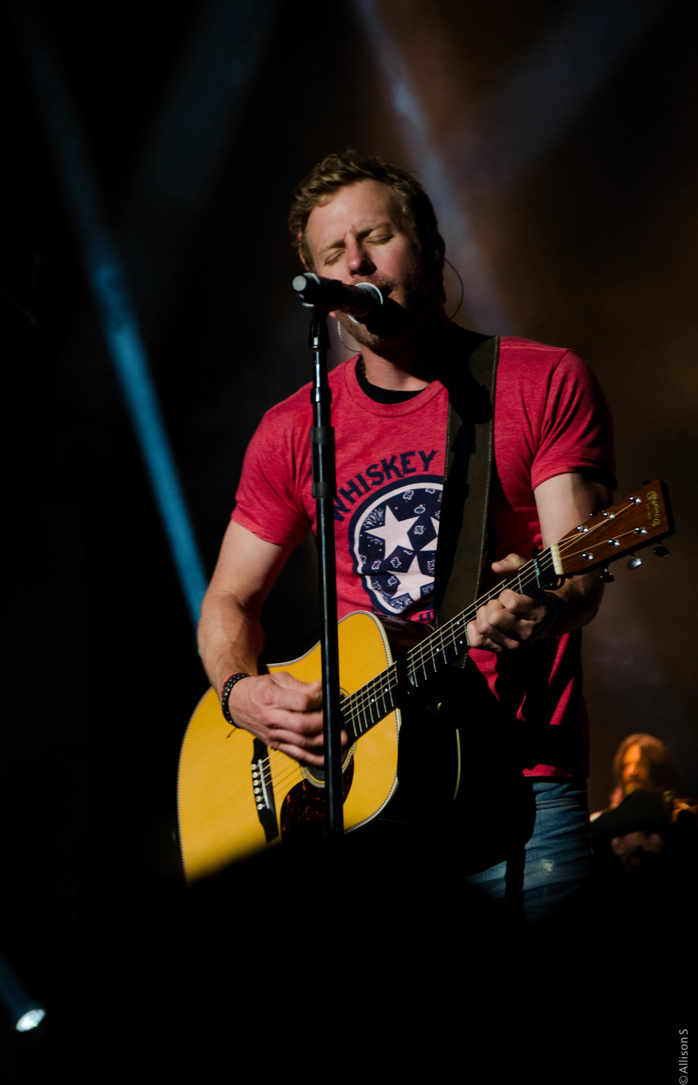 dierks-bentley_14408432545_o.jpg