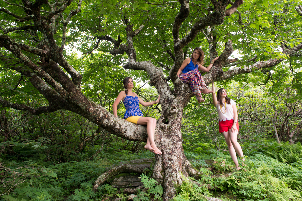 Underhill Rose (band) photo shoot at my favorite tree