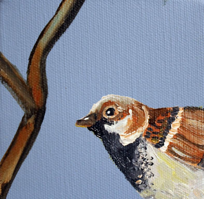 Painting_Sparrow.jpg