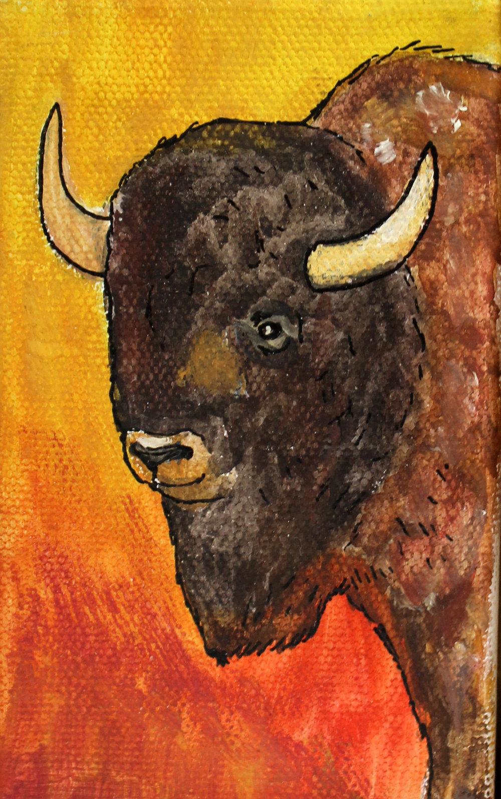 bison3.jpg