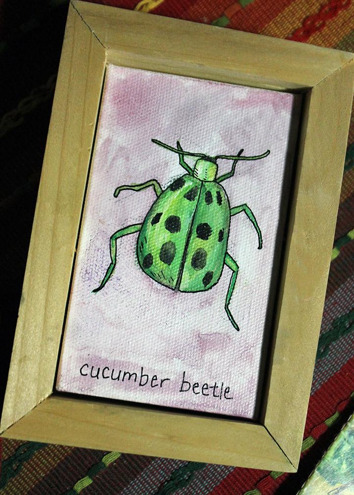 cucumberbeetle1.jpg