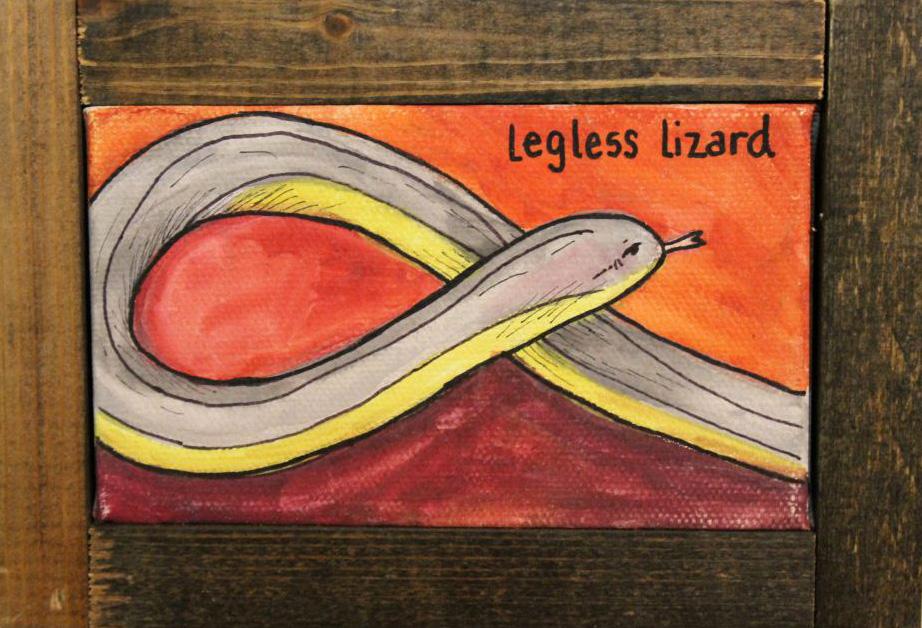 leglesslizard1.jpg