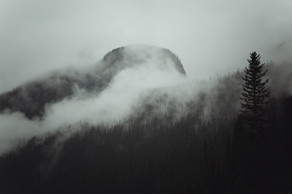 steve_seeley-mist_mount-1.jpg