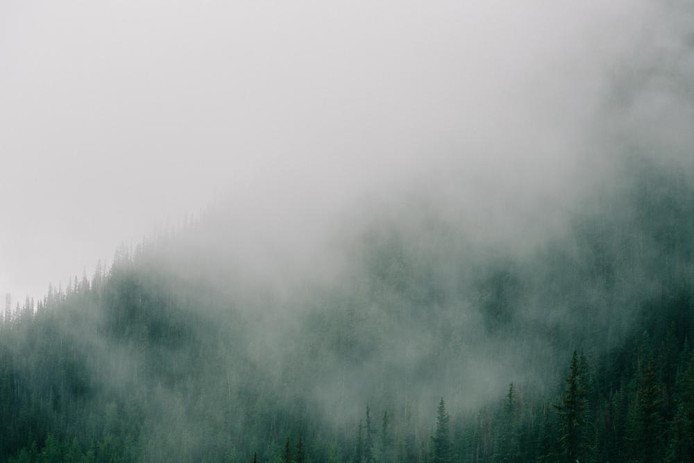 steve_seeley-mist_mount-8.jpg