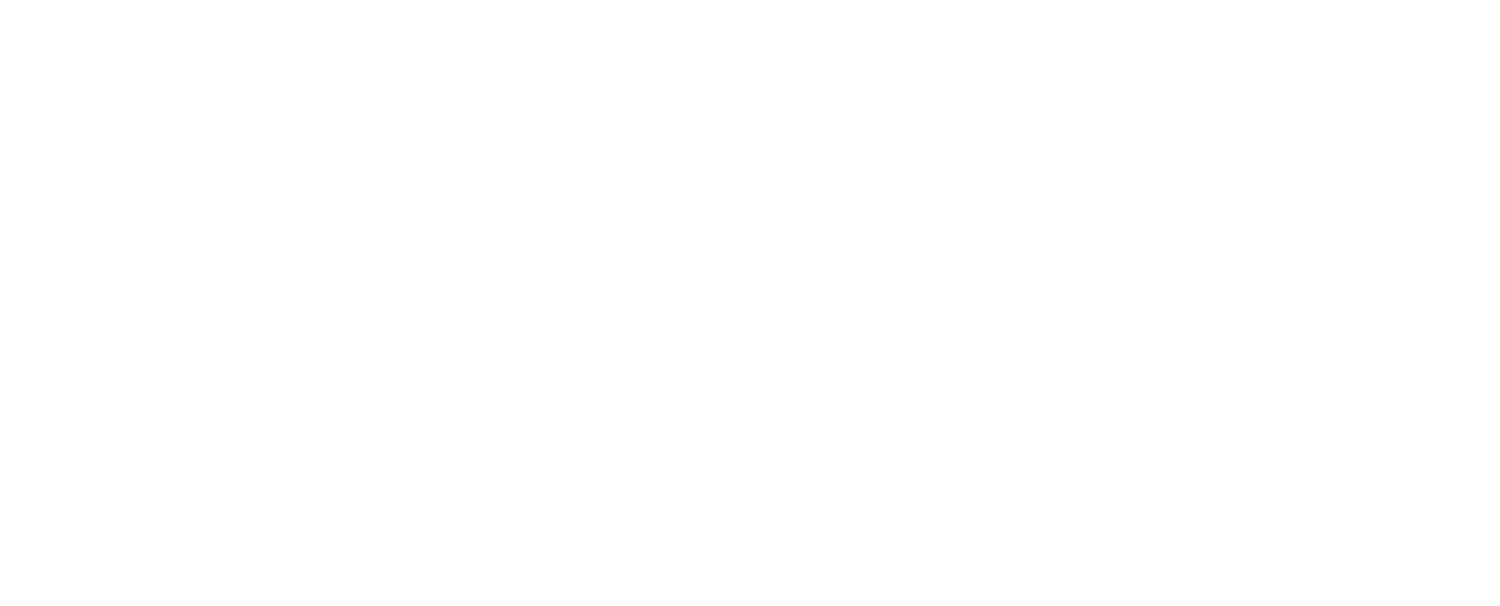 Cloud 9 Companion Care