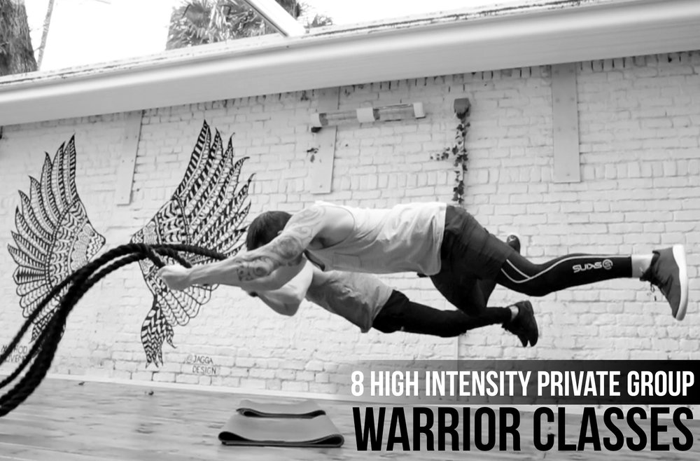 Warrior Sub Image.jpg