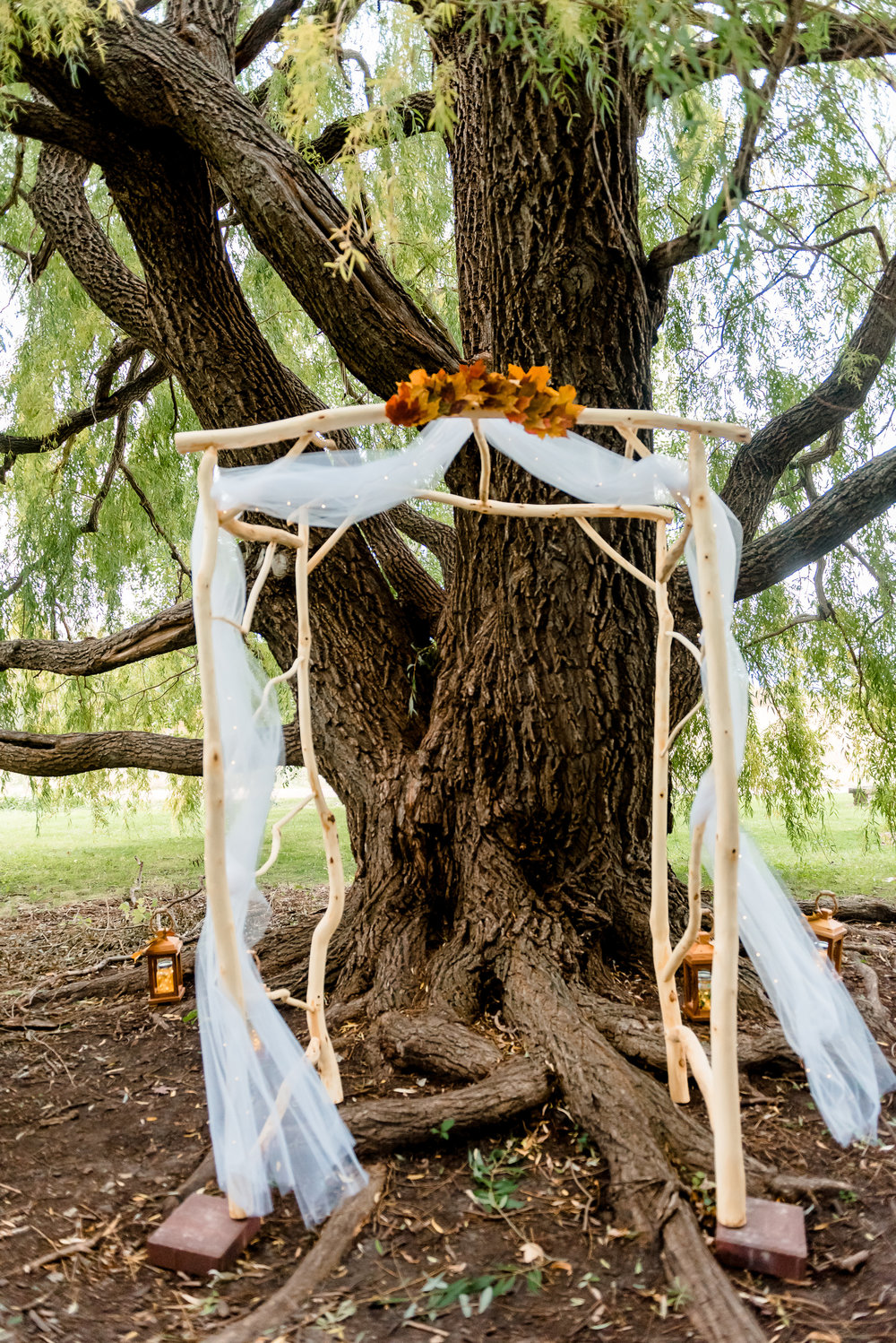 Handmade Wood Wedding Arbor - Weeping Willows Wedding Ceremony Site at MN Landscape Arboretum - Chaska MN Wedding Photographer