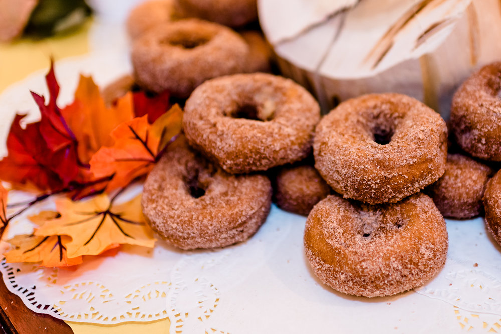 MN Harvest Apple Orchard Apple Cider Donuts Cake - Fall Wedding - Bird House Inn Wedding - Excelsior MN Wedding Photographer