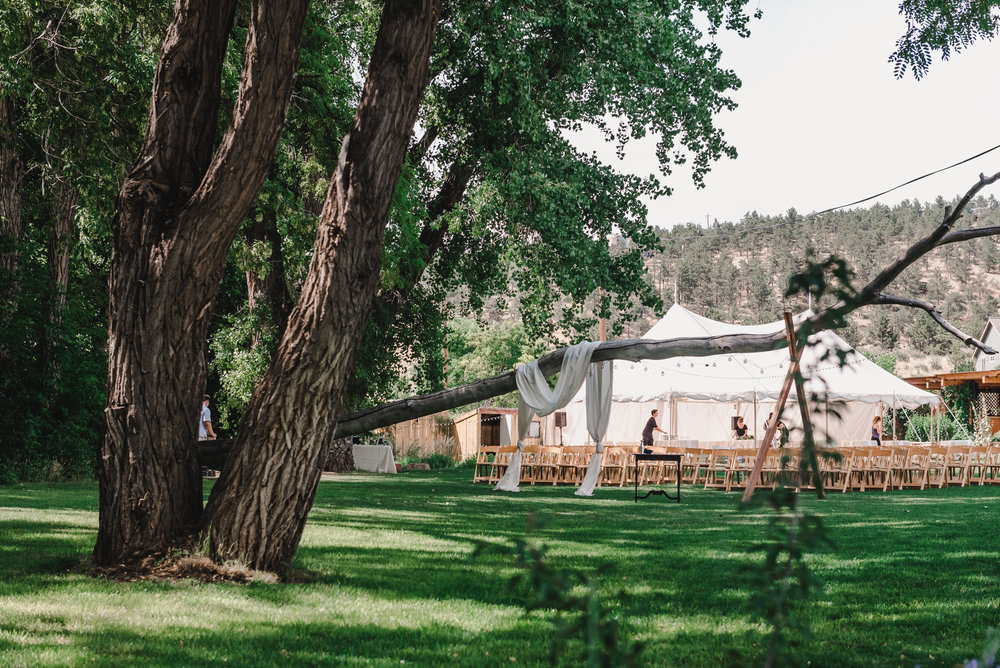 Outdoor Wedding with a Tent for Rain Backup - Ceremony with Chairs under Trees