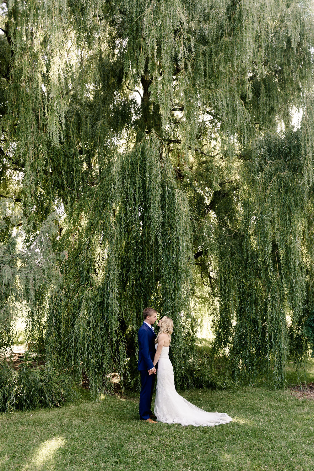 MN Landscape Arboretum Wedding Bride and Groom at Willow Trees - Chaska MN Wedding Photographer