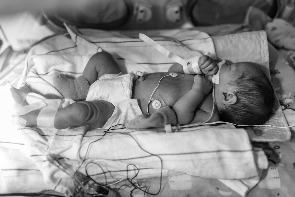 Kurtz Twins - Birth -55.jpg