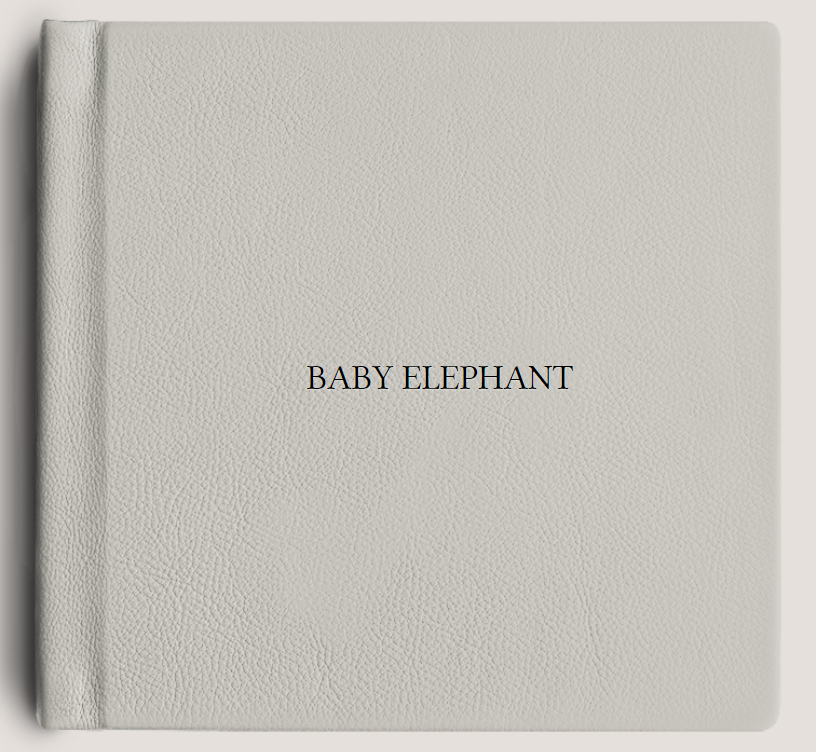 Baby Elephant.PNG