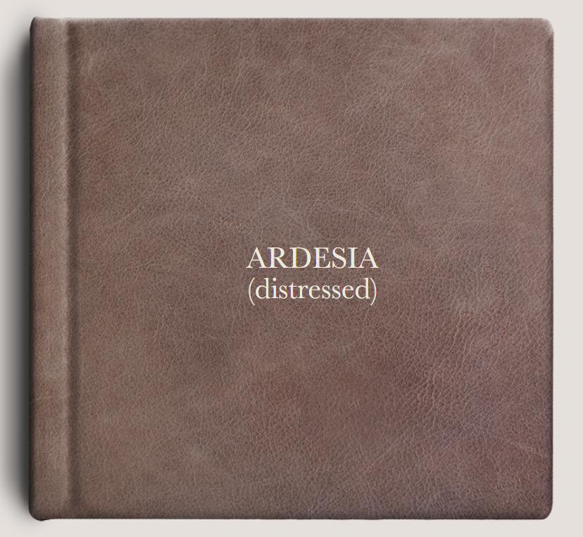 Ardesia (distressed).PNG