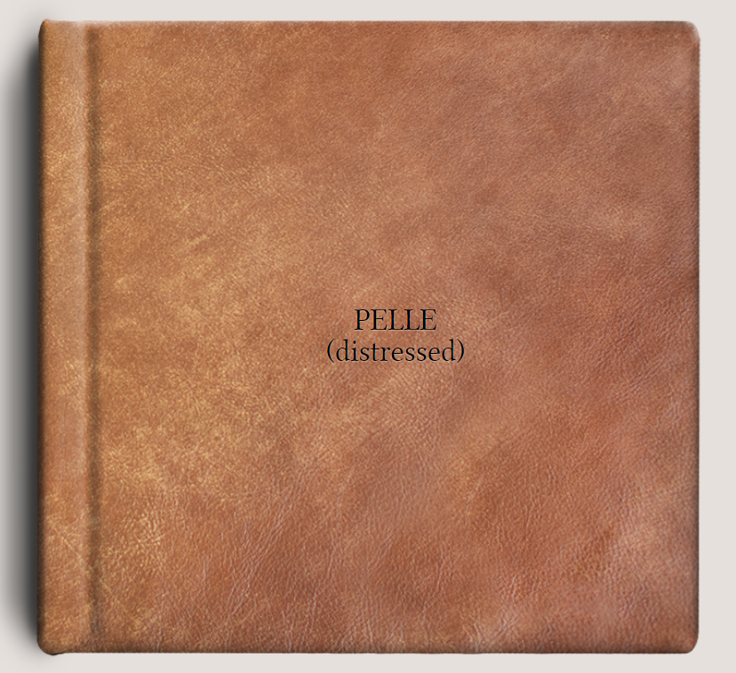 PELLE (distressed).PNG