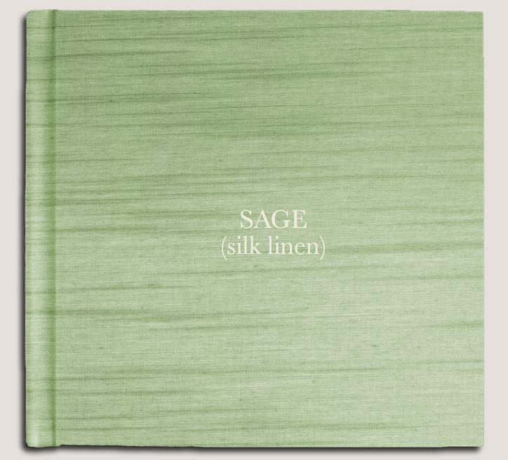 Sage (silk linen).PNG