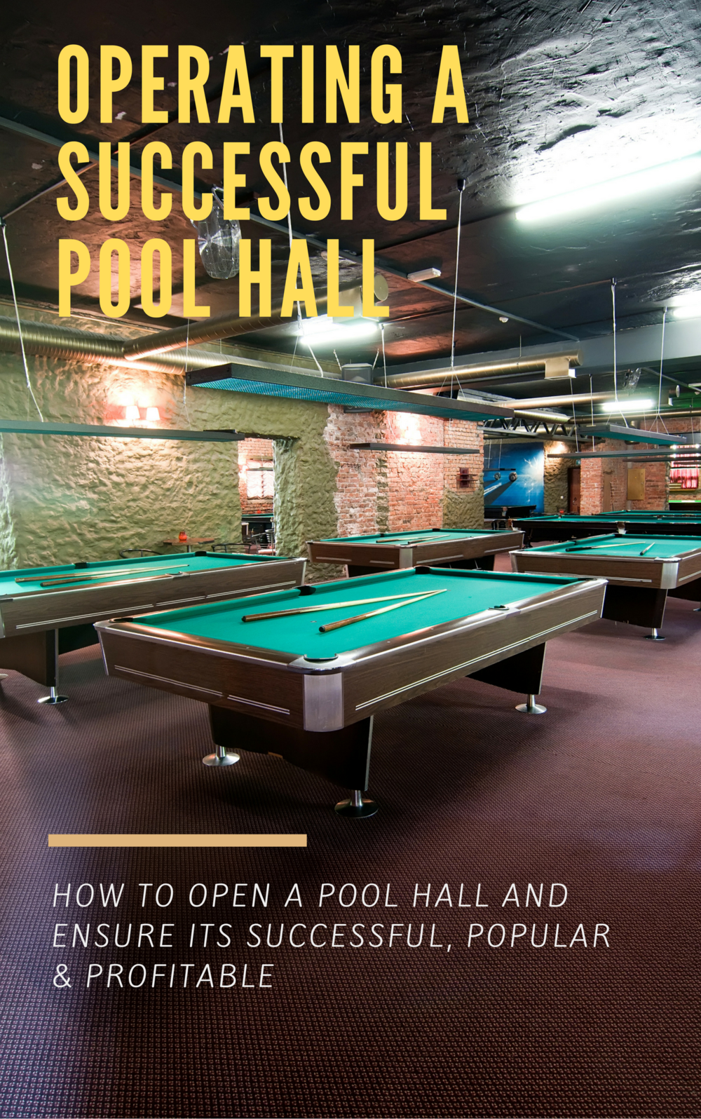 NEW!  This book will save you thousands! - Learn how to properly run your pool hall and position yourself for success                    CLICK HERE to preview