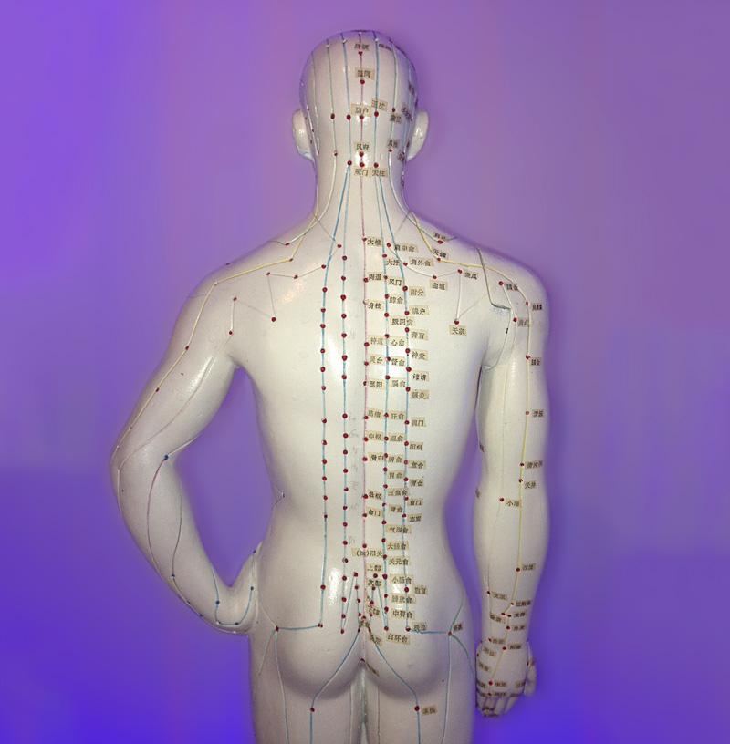 Rückensegment Therapie