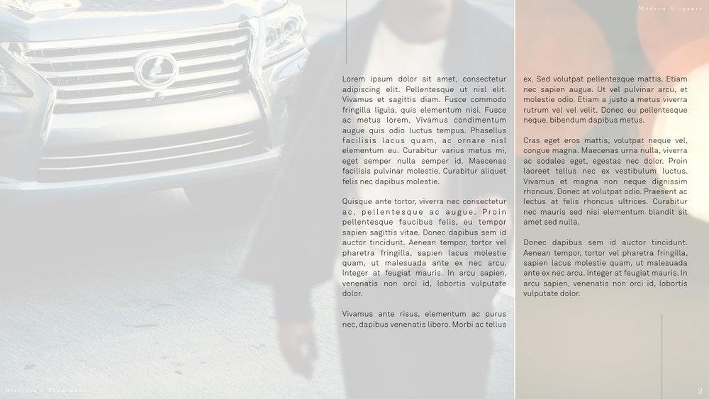 LexusSample.002.jpeg