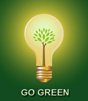 eco-friendly_light_bulb1.jpg