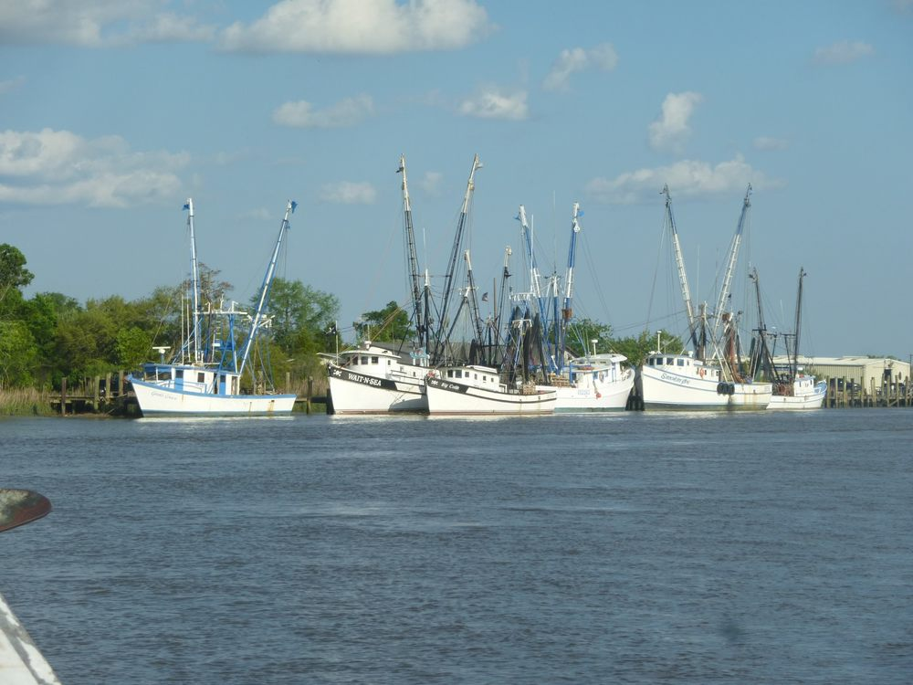 Shrimp trawlers docked in the St. Simons waterways