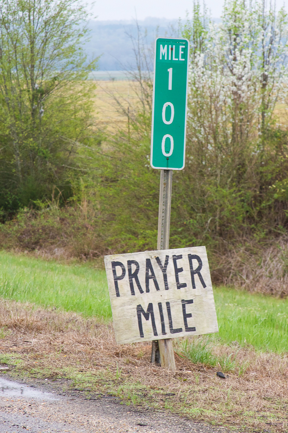 A sign left on U.S. Highway 80 in Lowndes County, Alabama. Photo by Lauren S. Hughes.