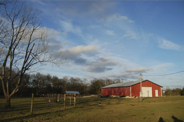 A farm in Alabama where the author spent much of her time growing up. Photos courtesy author.