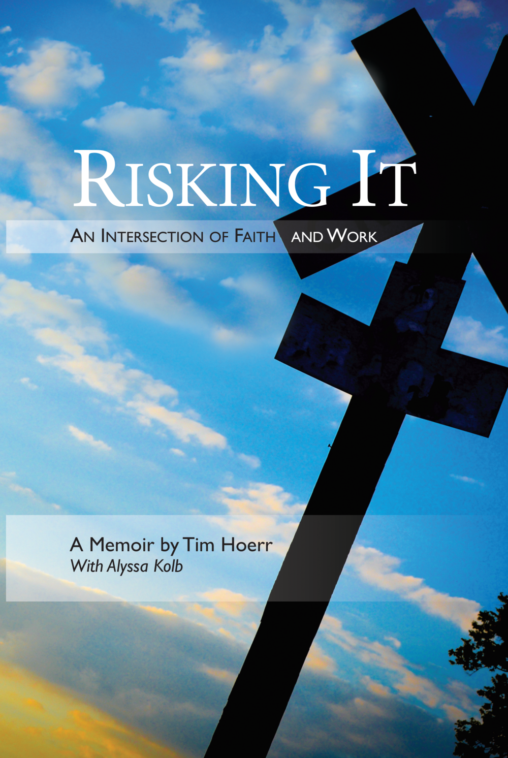 tim-hoerr-risking-it-cover