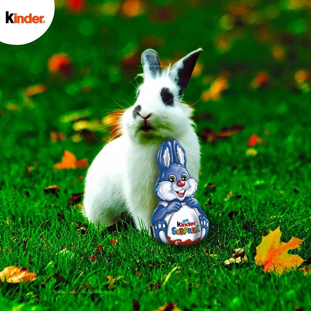 Les lapins préparent Pâques en douce !