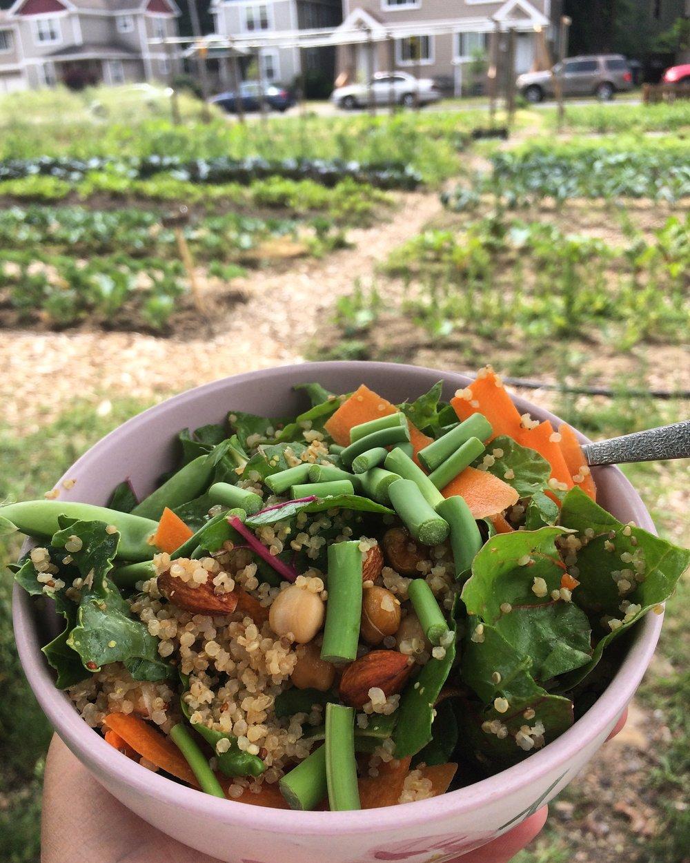 20150706-Vegetarian-Mexican-Chopped-Salad-NM-004.jpg